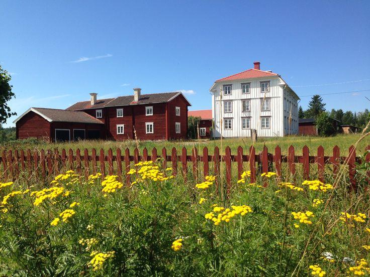 Hälsingegård Old houses Sweden