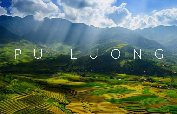 You could find these gems in the wilderness of Pu Luong Nature Reserve, where the rice terraces are plenty and the people are few.