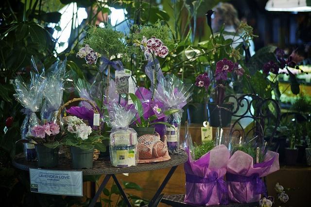 KJM Urban Gardens: Wide selection of small plants, gift items, and gardening supplies.By John Bollwitt, via Flickr