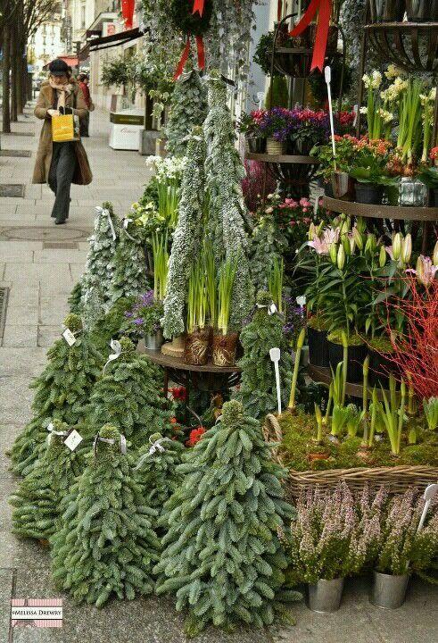 Christmas time in France. Outdoor Market Rue Monge, Paris 5e.