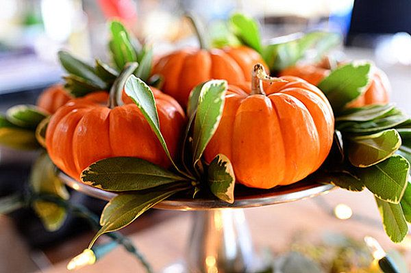 Decoration, Simple Thanksgiving Decoration Ideas With Fresh Pumpkins And Leaves: Impressive Unique Thanksgiving Centerpiece Appears Breathtaking Look
