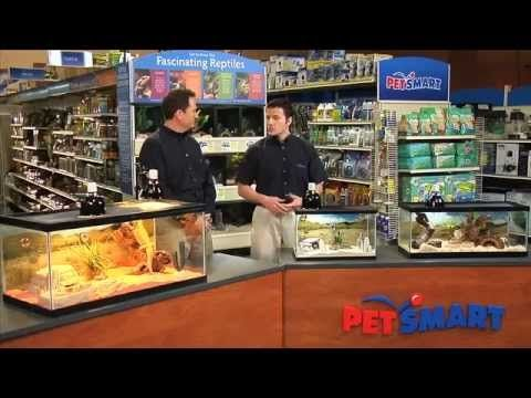Petsmart.com has a wonderful teacher's guide with PDF lesson plans, videos, and information on the different classroom pets that the Pets in the Classroom PetSmart grant option supports.