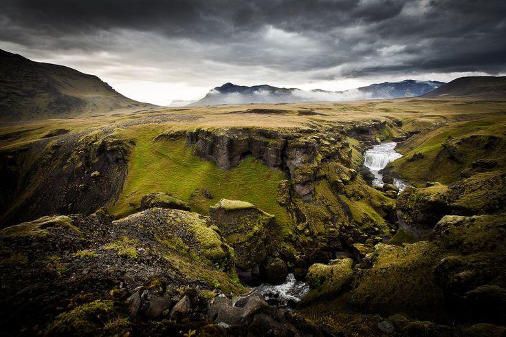 islande_skogar