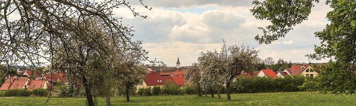Hilpoltstein-Meckenhausen, Pfarrkirche St. Martin