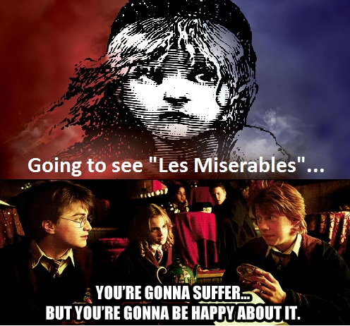 Going to see Les Miserables? You're gonna suffer…but you're gonna be happy about it. ~ Les Mis Harry Potter.