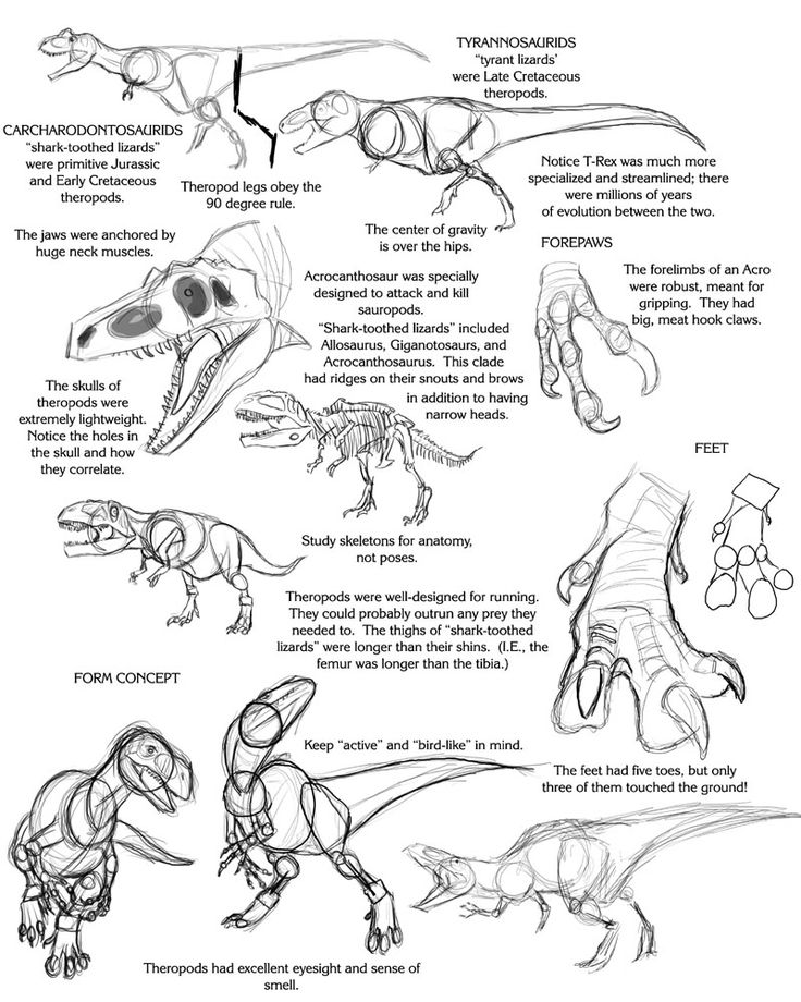 Scary dinos drawing tutorial by Droemar,