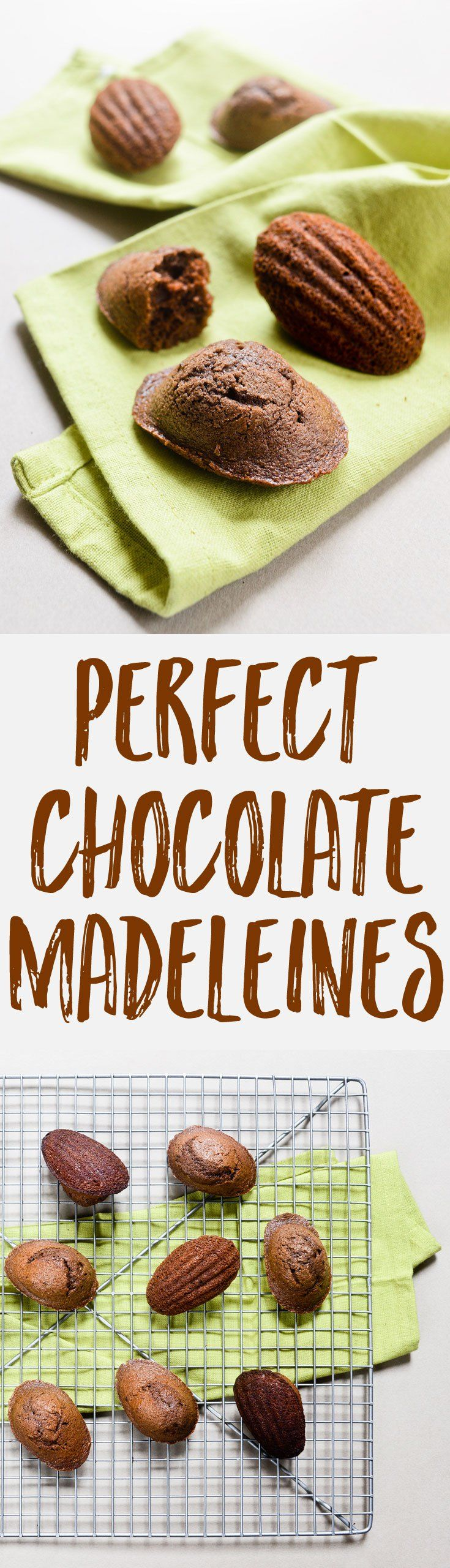Looking for a recipe to make perfect chocolate madeleines, with an intense chocolate flavor and a nice bumpy top? This is it!