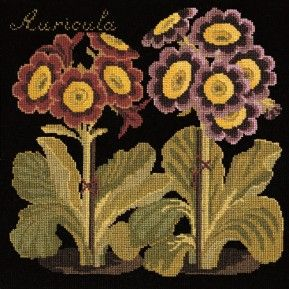 Auricula needlepoint kit from Elizabeth Bradley