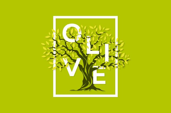 Vector olive tree logo design @creativework247