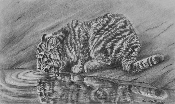 Original Pencil Drawing OOAK Tiger Drawing  by NicoleBarrosArt