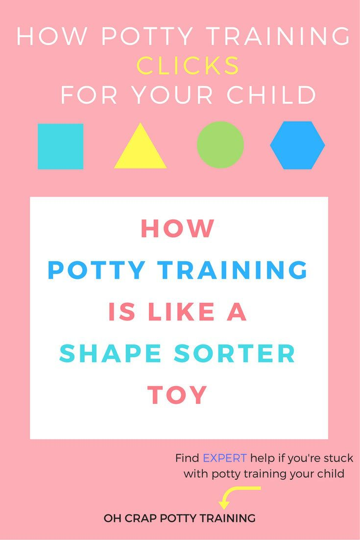 potty training tips | potty training like shape sorter toy | Oh Crap Potty Training | how to potty train | how to toilet train