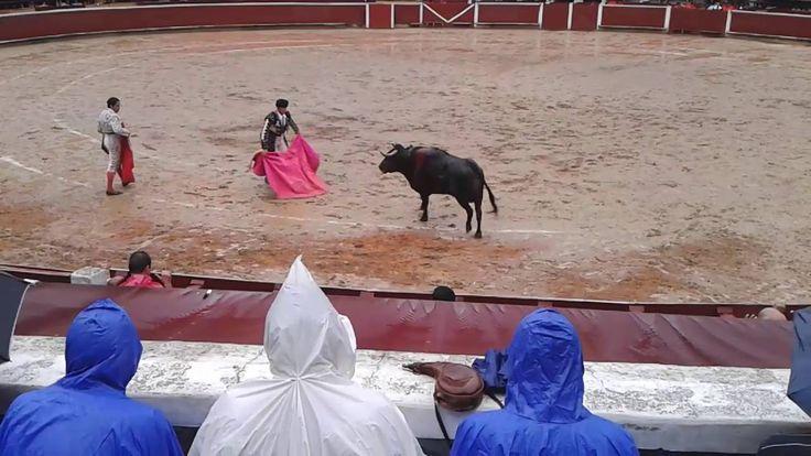 ASI DE MAL LE FUE AL TORERO, MALA TOREADA Y PÉSIMA MARCADA DE UNA PLAZA ...