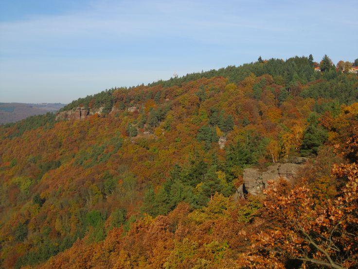 Blick auf die Buntsandsteinfelsen