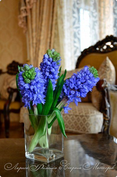 """Букет гиацинтов """"HYACINTH BLUE"""".Выполнен из специальных полимерных глин. Мастер - Лариса Фоменко. Bouquet of hyacinths """"Hyacinth blue"""" made of special polymer clay. Master - Larysa Fomenko"""