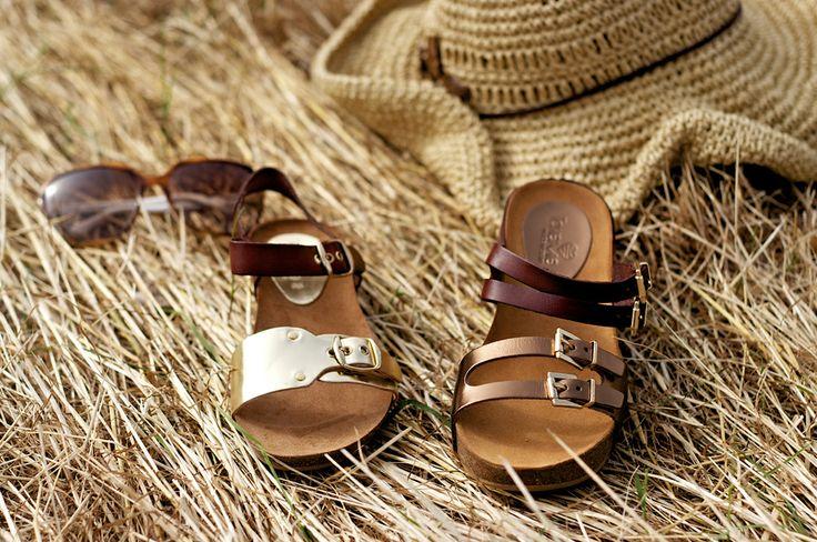 www.sericote.com
