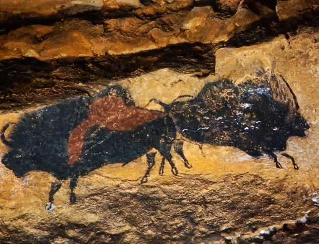 Lascaux cave paintings, c. 15,000 b.c.e. (photograph by Ralph Morse for…