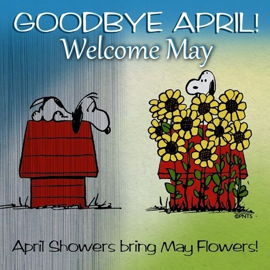 Goodbye April Welcome May may snoopy month hello may welcome may goodbye april hello may quotes goodbye april hello may | Snoopy, Snoopy love, Snoopy quotes
