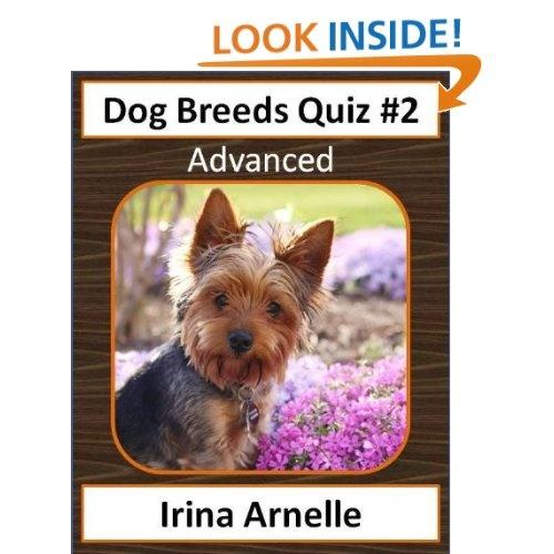 Dog Breeds Quiz #2 - kids game book | Yorkie dogs ...