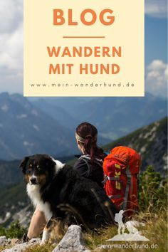 Walking with a dog – the blog with tips, routes and experiences