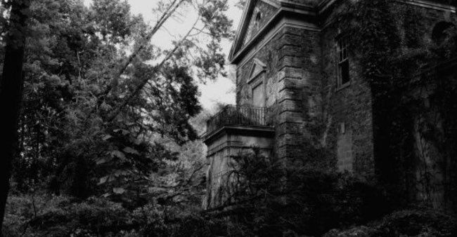 12 Facts About Willowbrook, the Nightmare Institution Behind the Cropsey Legend