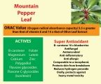 Mountain Pepper Leaf is a super antioxidant. The ORAC Value of Mountain Pepper Leaf Extract is around 15 x greater than that of Olive Leaf Extract.
