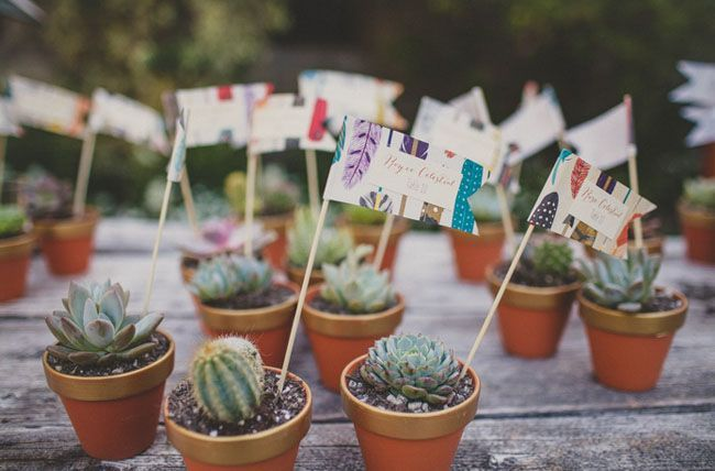 Wedding favours - succulents in tiny terracotta pots.