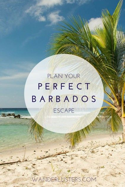 Your guide to planning a Quintessential Barbados Escape #wanderlust #Caribbean #travel