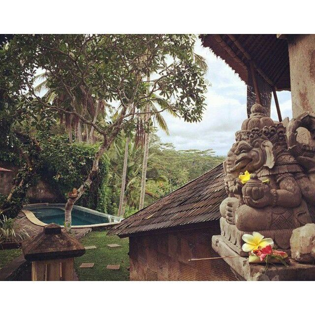 Morning offering    great pic by:@lueesita from ubud bali    Book your #villa #hotel #accommodation with us get the best rate offers. for futher inquiries email to; info@geriabalivacation.com has tag...