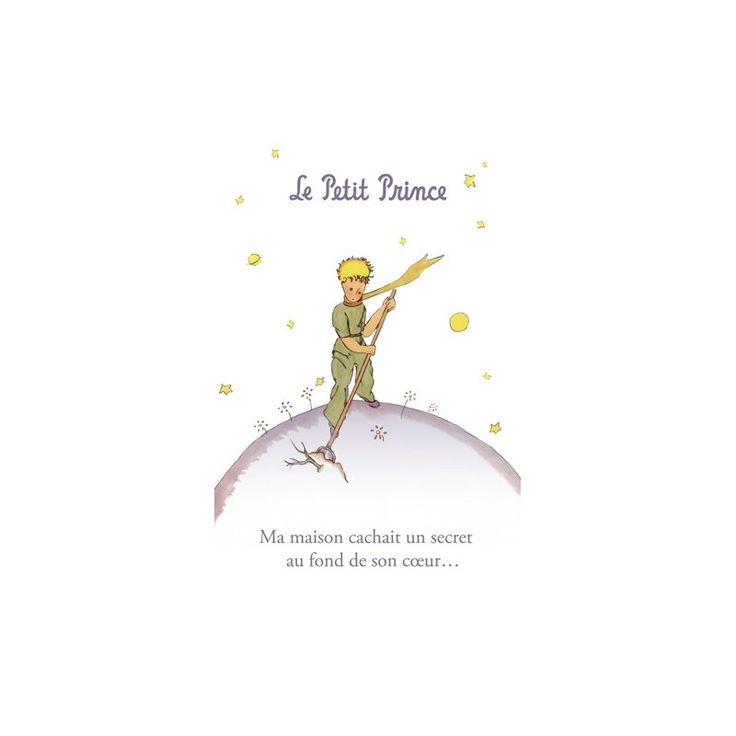 Favori 28 best Le petit prince images on Pinterest | The little prince  NT77