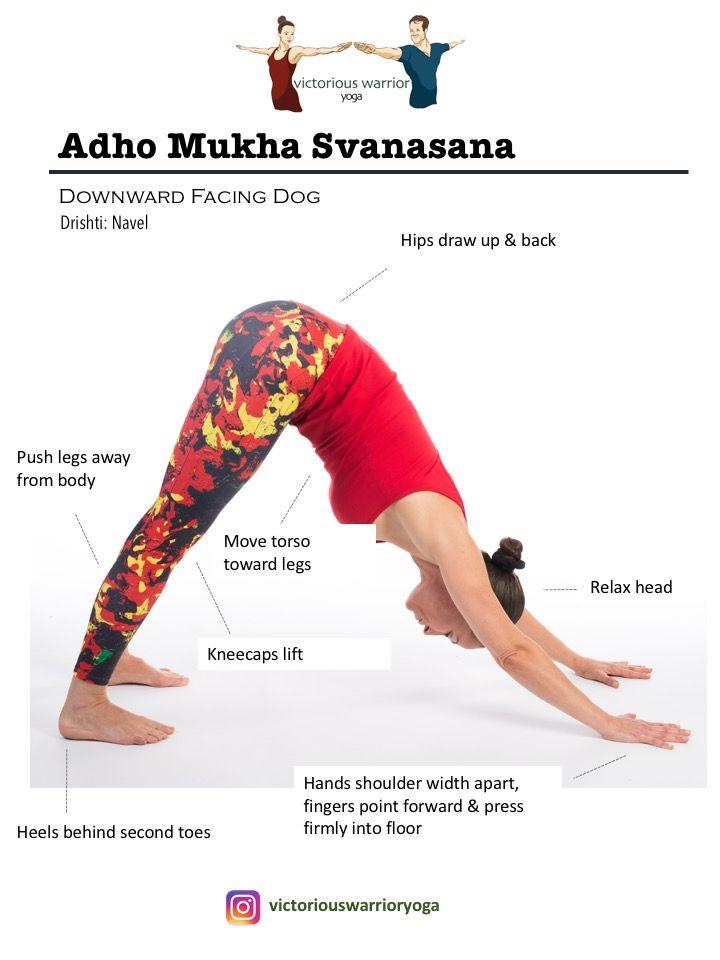 Surya Namaskara A | Victorious Warrior Yoga & Fitness