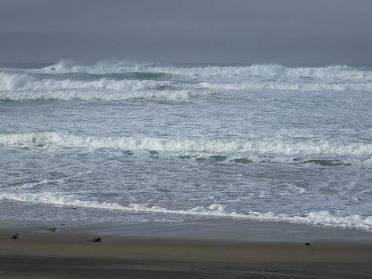 Ocean Waves feb 2012