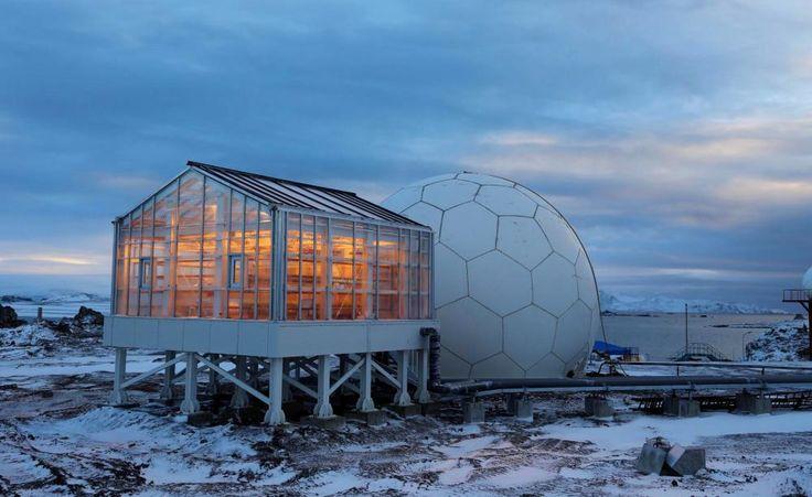 Grüne Oase: Ein Gewächshaus in der Antarktis -  Bei minus 30 Grad Celsius ist Gartenarbeit draußen natürlich nicht möglich. Chinesische Polarforscher sind jetzt dank eines Gewächshauses mit Spezialglas aus Deutschland in der Lage, sich mit selbstgezogenem Gemüse zu versorgen.