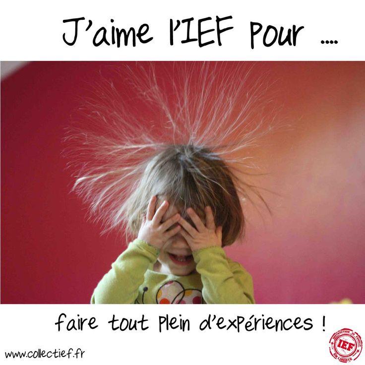 J'aime l'IEF pour ... Et toi pourquoi aimes-tu faire l'IEF ?