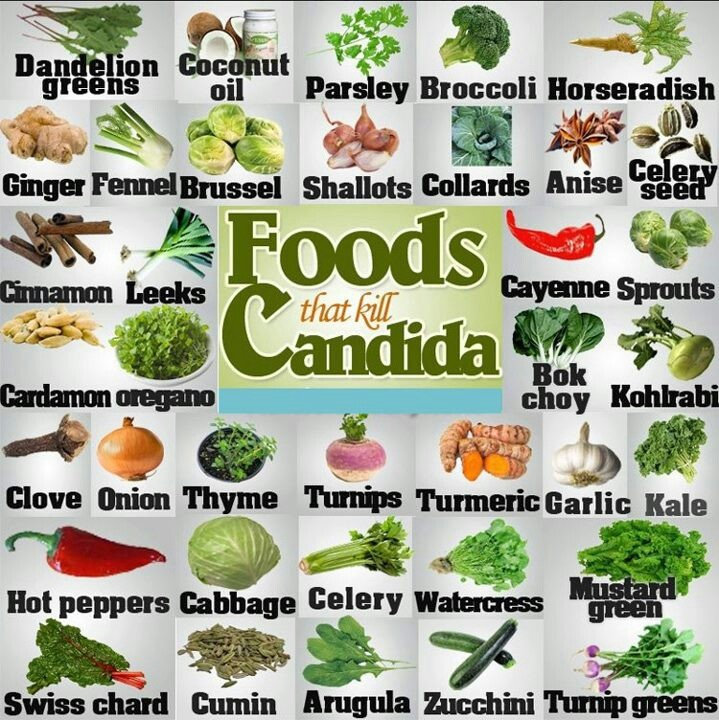 Foods that kill Candida blah so boring you will stare on this business