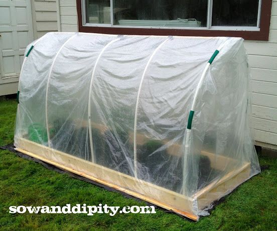 1000+ Images About DIY Greenhouse On Pinterest