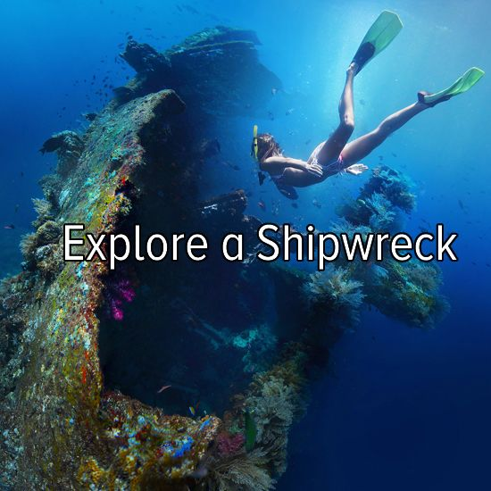 Bucket list: explore a shipwreck...I would love to do this, but seeing how I'm deathly scared of going into the ocean I'm not sure how this would work.