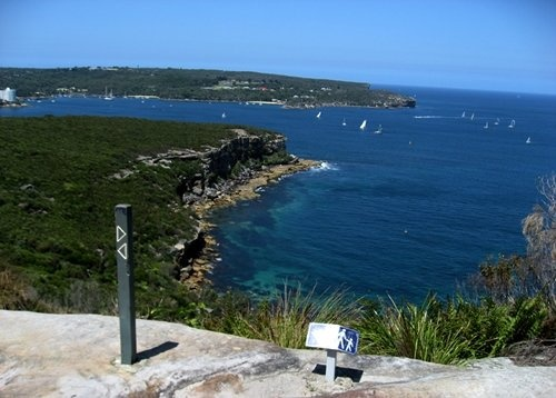 Spit Bridge to Manly walk - 10kms of paradise