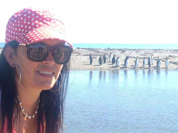 Parque Pingüino Rey