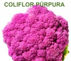 Coliflor púrpura