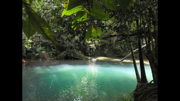 Australia-Queensland-Daintree Rainforest-swimming hole