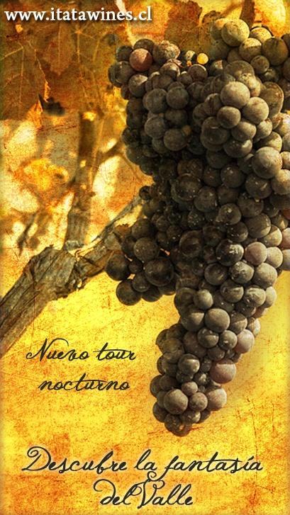 Itata Wines