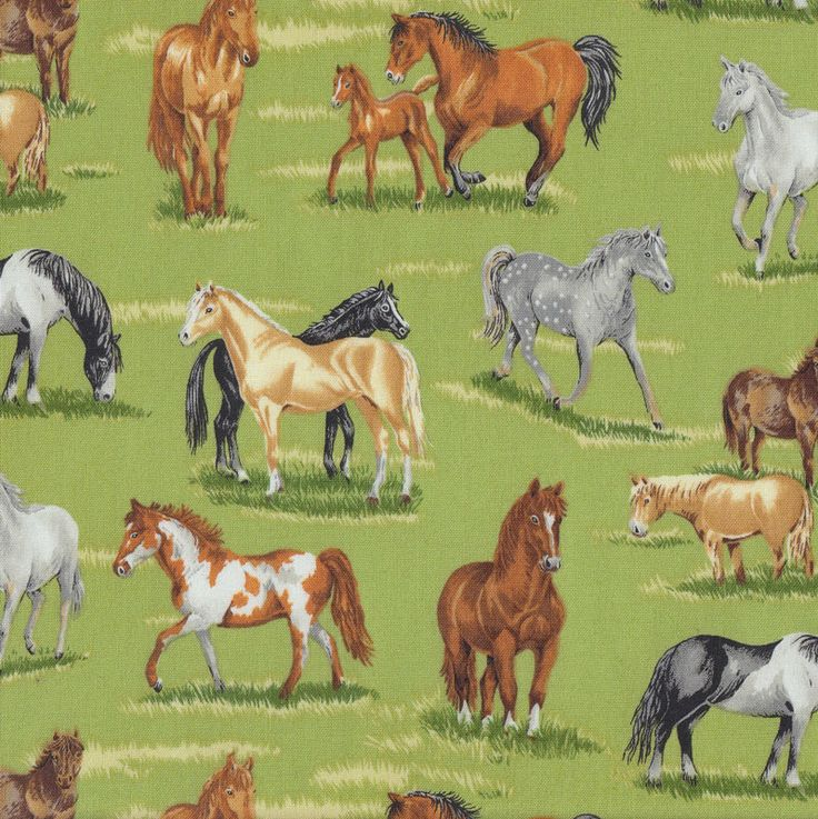 Horses on Green Quilting Fabric - Find a Fabric - Available to purchase in Fat Quarters, Half Metre, 3/4 Metre, 1 Metre and so on.