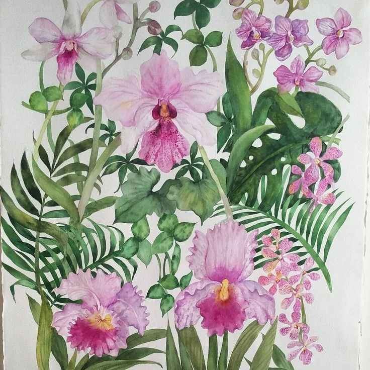 I will be teaching tropical leaves and flowers like monstera, palm leaves, hibiscus and orchids at my Tropical Watercolour Workshop tomorrow, 10/7 Mon 2.30-6pm. #esthertropical  If you are available join me in the night for Artjam, 6.45-8.45pm, sharing with you how to paint florals and leaves with Triangle brush  #esthertrianglebrush  Seats are still available for 24/7 Mon 2.30-6pm and 12/8 Sat 2.30-6pm Peonies Watercolor Workshop #estherpeonies  #botanical #botanicalillustration #sgworkshop…