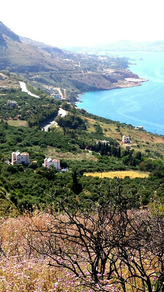 Villa Amalia & Villa Eleanna