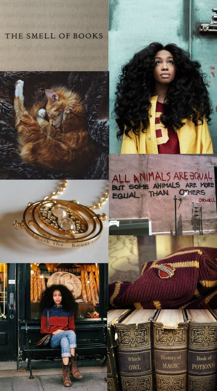 "Hermione Granger aesthetic- the girls of hogwarts: ""You do realize that your sheets are changed, your fires lit, your classrooms cleaned, and your food cooked by a group of magical creatures who are unpaid and enslaved?"""
