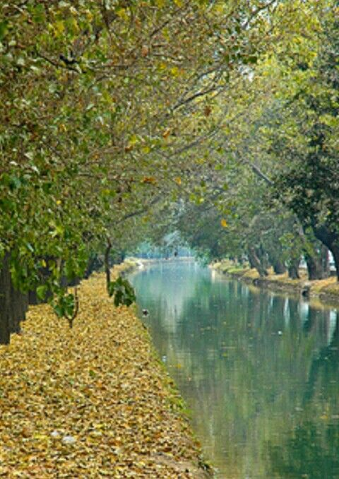 An autumn view of Canal, Lahore, Pakistan.