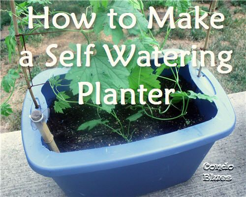 How to Make a Self Watering Planter from a Plastic Storage Tub from Condo Blues