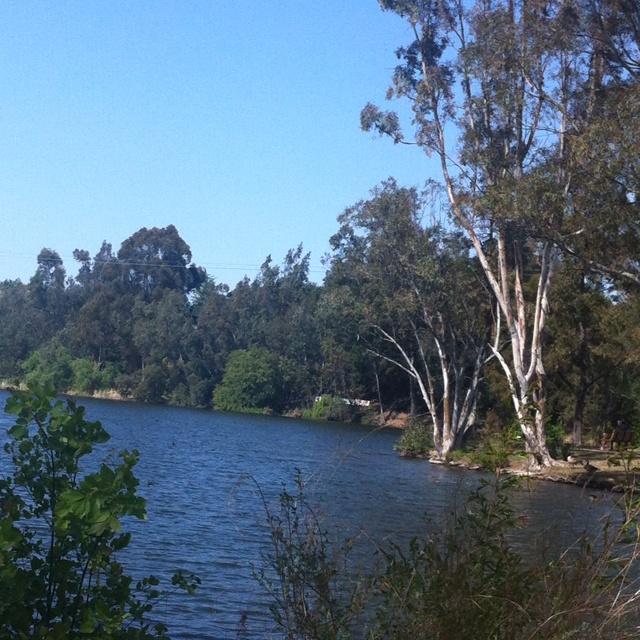 Vasona park, Los Gatos California.  This reminds of my days growing up