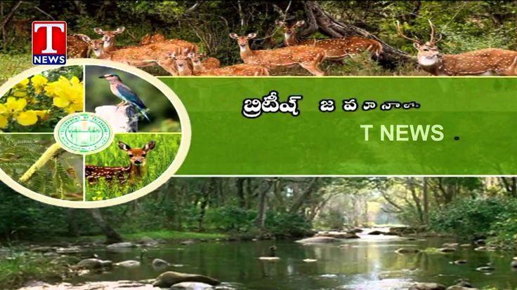 http://telugulocalnews.com/telangana/telangana-govt-to-introduce-new-forest-conservation-law-cm-kcr/
