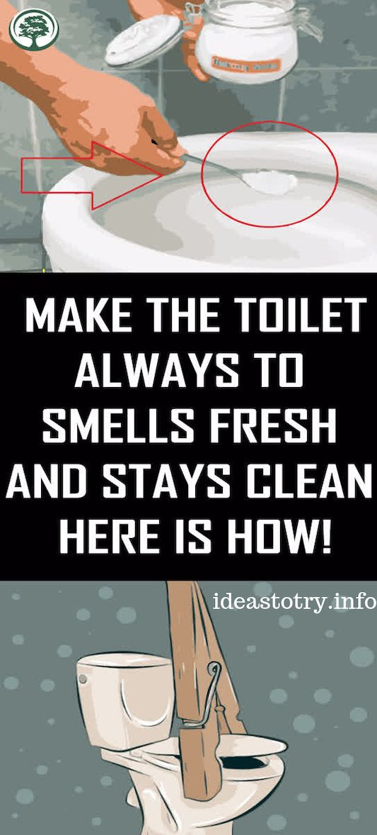 MAKE THE TOILET ALWAYS TO SMELLS FRESH AND STAYS CLEAN ...